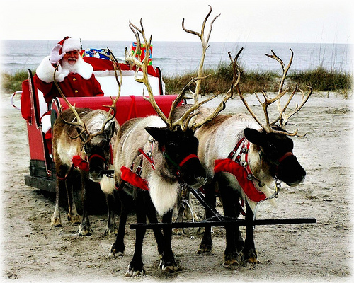 Santa at the Beach Ornaments from Weaselmcfee creative commons flickr